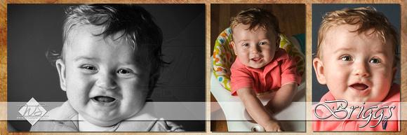 Briggs Collage Sample